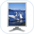 Monitor ColorEdge CG211