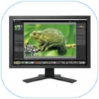 Monitor ColorEdge CG241W