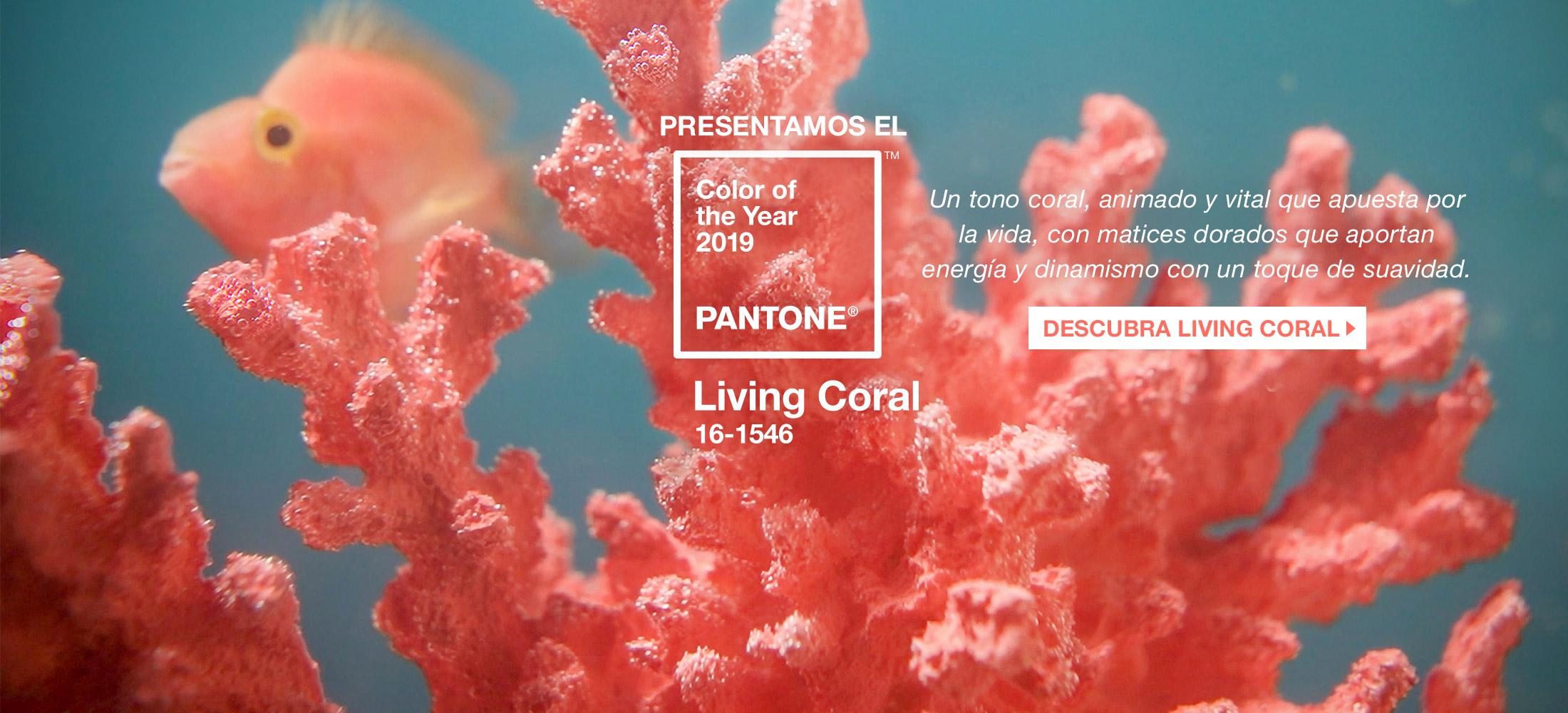 Printex – Solo Lo Mejor